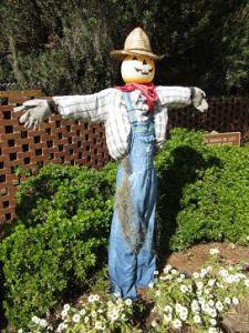 c.2015 Classic Scarecrow